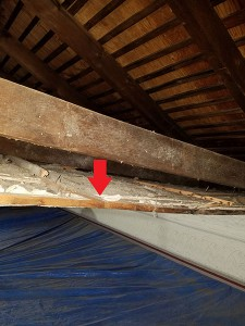 Detached Ceiling From Rafter Causing Ceiling Sag